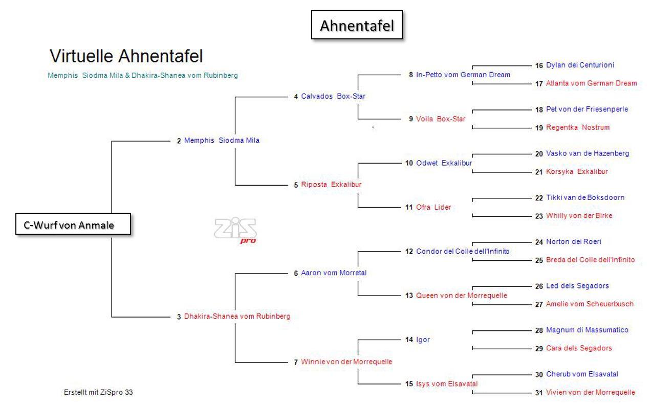 Ahnentafel c-wurf